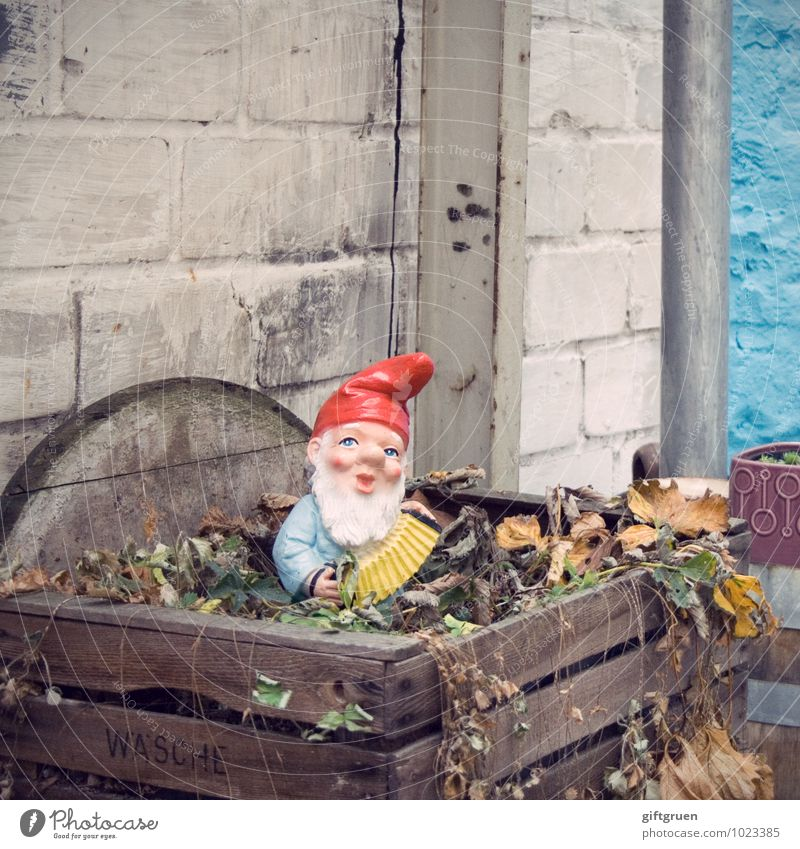 there I sit now... Human being Masculine Male senior Man 1 Stand Old Blue Red Nostalgia Tradition Past Garden gnome Santa Claus hat Accordion Compost