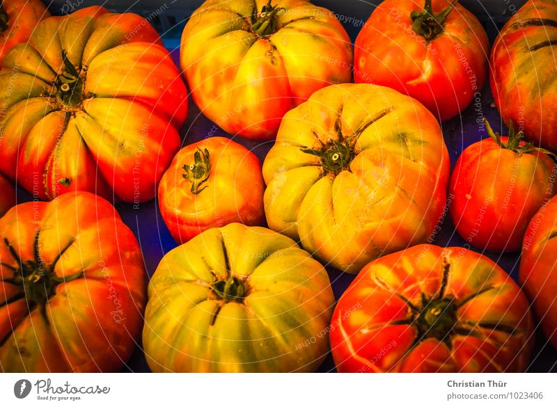 Fresh tomatoes Vegetable Nutrition Eating Organic produce Vegetarian diet Diet Fasting Slow food Italian Food Life Summer Healthy Juicy Background picture
