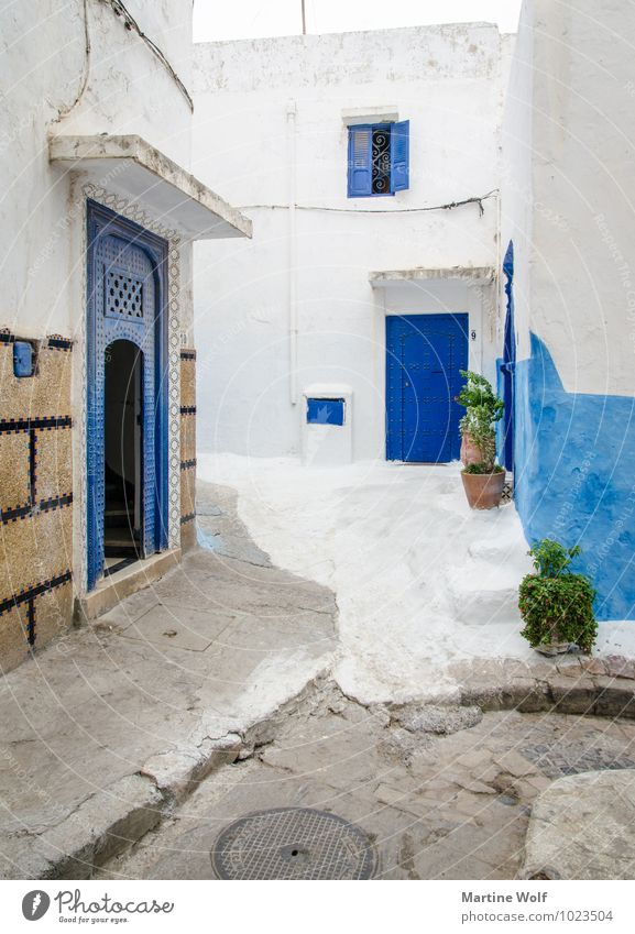 Vacation & Travel Blue White House (Residential Structure) Living or residing Africa Alley Old town Morocco Rabat