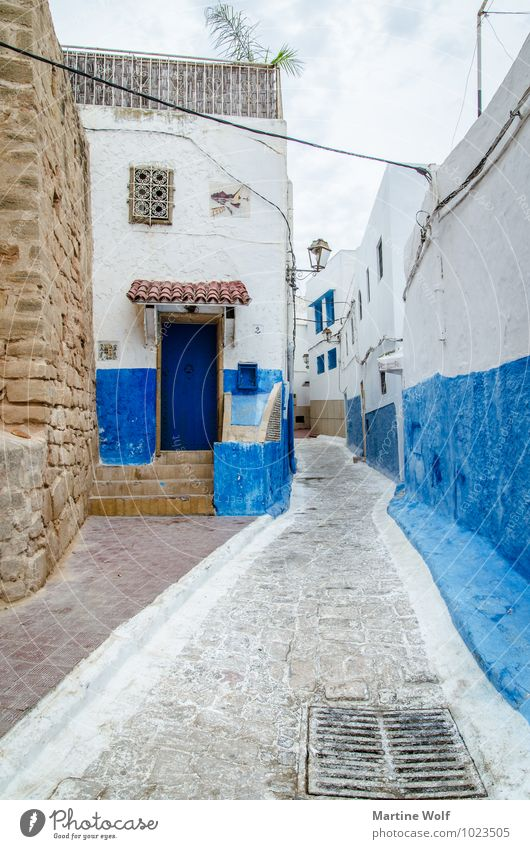 Kasbah de Oudaïa 2 Rabat Morocco Africa Old town Vacation & Travel Living or residing Alley Blue White Colour photo Exterior shot Deserted Day