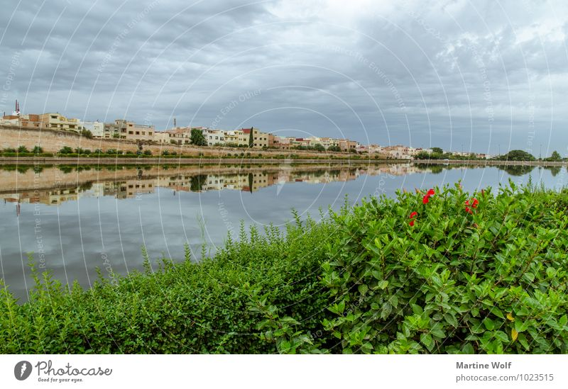 Basin Agdal Pond Meknes Morocco Africa Town Idyll Vacation & Travel Calm Palace Circle Moulay Ismail Ville Imperial Reflection overcast Colour photo