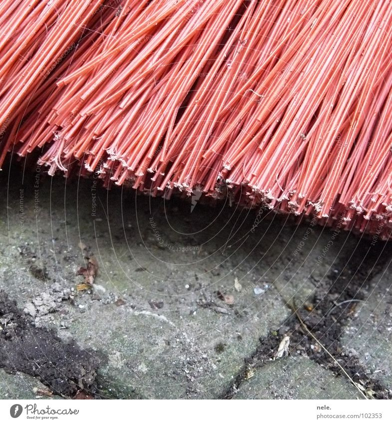 Red Work and employment Stone Dirty Clean Cleaning Boredom Traffic infrastructure Cobblestones Household Net Broom Spider's web Bristles Stony Sweep