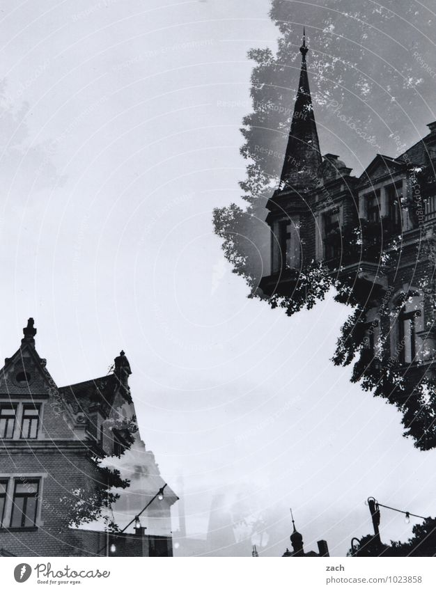 divided sky City trip Living or residing House (Residential Structure) Dream house Tree Dresden Town Old town Castle Manmade structures Architecture Villa