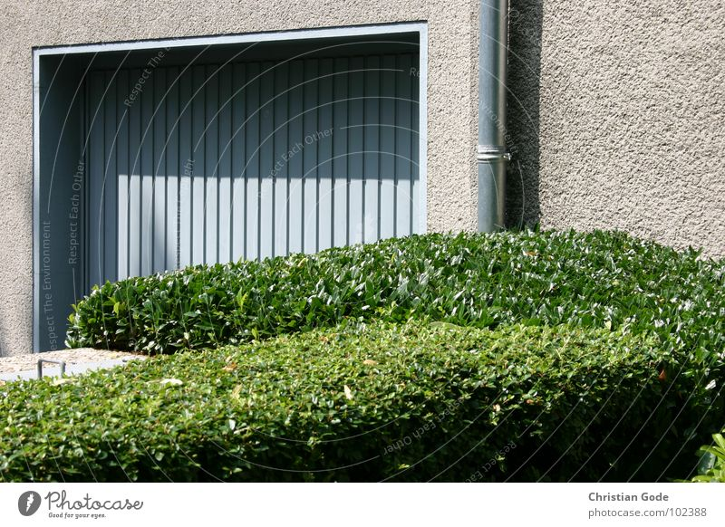 Green Blue Wall (barrier) Architecture Motor vehicle Gate Garage Hedge Garden Gardener Detached house Front garden Downspout Hedge shears