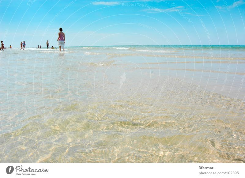 Woman Water Ocean Blue Summer Joy Beach Vacation & Travel Calm Clouds Emotions Freedom Group Lake Warmth Earth