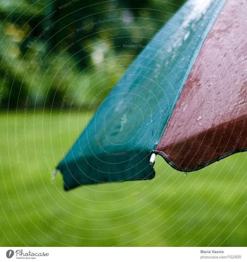 Water Sun Summer Autumn Sadness Rain Weather Drops of water Wet Umbrella Furniture Sunshade Thunder and lightning Damp Storm Dreary