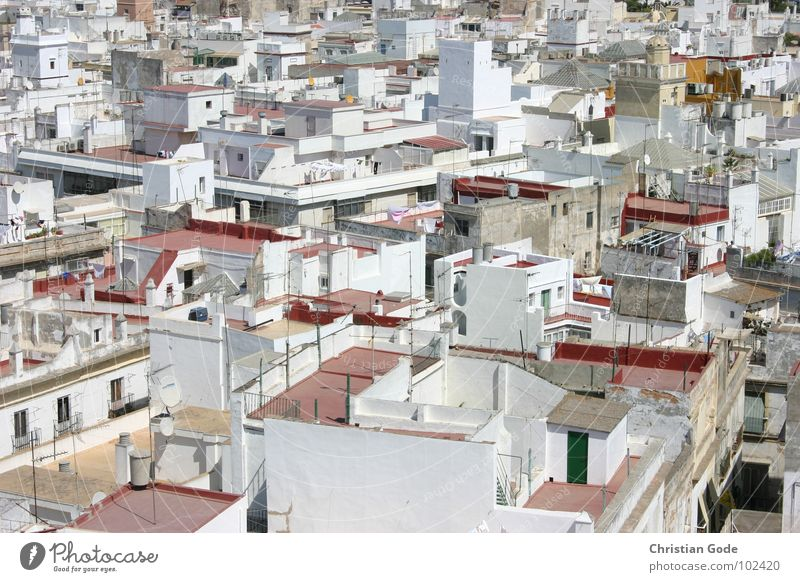 Above the roofs of Cadiz Spain Andalucia Tower Roof Pirate Roof terrace Red White Covered market Vacation & Travel Summer Physics Tourist Tourism Africa