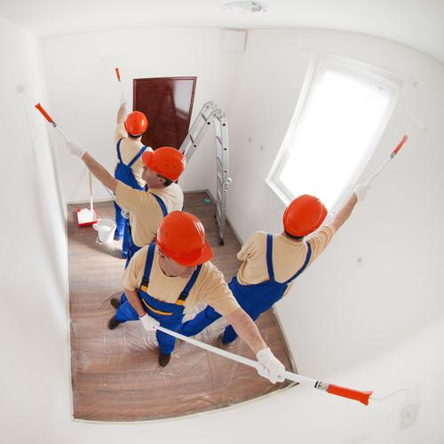 A team of workers painting a small empty room Design House (Residential Structure) Ladder Man Adults 4 Human being T-shirt Gloves Work and employment