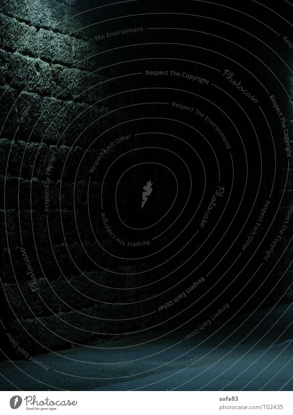 Blue Black Loneliness Street Lamp Dark Wall (barrier) Fear Dangerous Threat Tunnel Panic