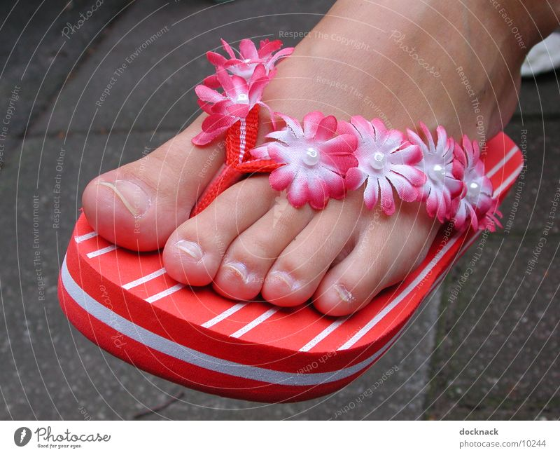 Hipp Flopps Flip-flops Footwear Toes Summer Photographic technology Feet
