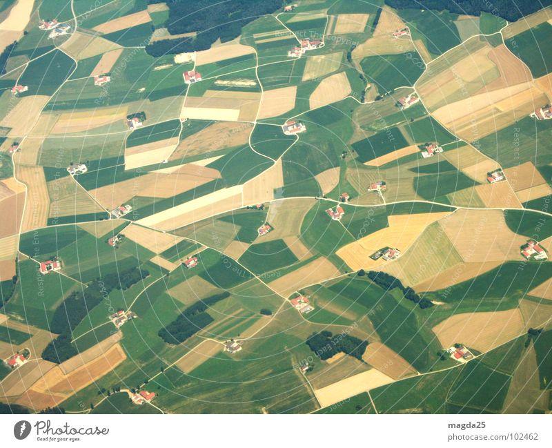 Aerial photograph Meadow Bird's-eye view Field Airplane Farm Carpet