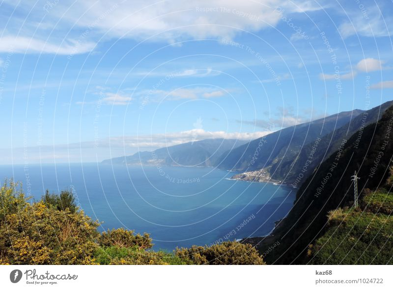madeira Vacation & Travel Tourism Trip Summer Summer vacation Sun Beach Ocean Island Nature Landscape Plant Animal Water Sky Beautiful weather Rock Lakeside