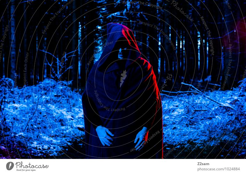 Dark Night Masculine Young man Youth (Young adults) Nature Landscape Autumn Ice Frost Snow Tree Bushes Forest Coat Hooded (clothing) Stand Creepy Cold