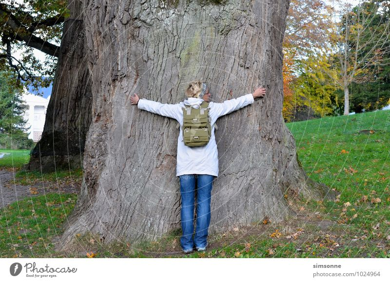 A woman hugs an ancient tree Environment Nature Plant Elements Old Embrace natural Blue Colour photo Day