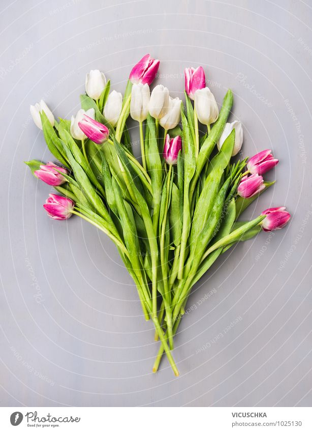 Tulips Bouquet of flowers Style Design Summer Feasts & Celebrations Valentine's Day Mother's Day Wedding Birthday Nature Plant Spring Love Pink Arranged Flower