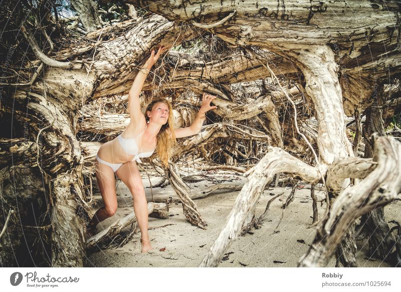 Human being Woman Child Nature Vacation & Travel Youth (Young adults) Summer Tree Young woman 18 - 30 years Beach Adults Feminine Natural 13 - 18 years Threat
