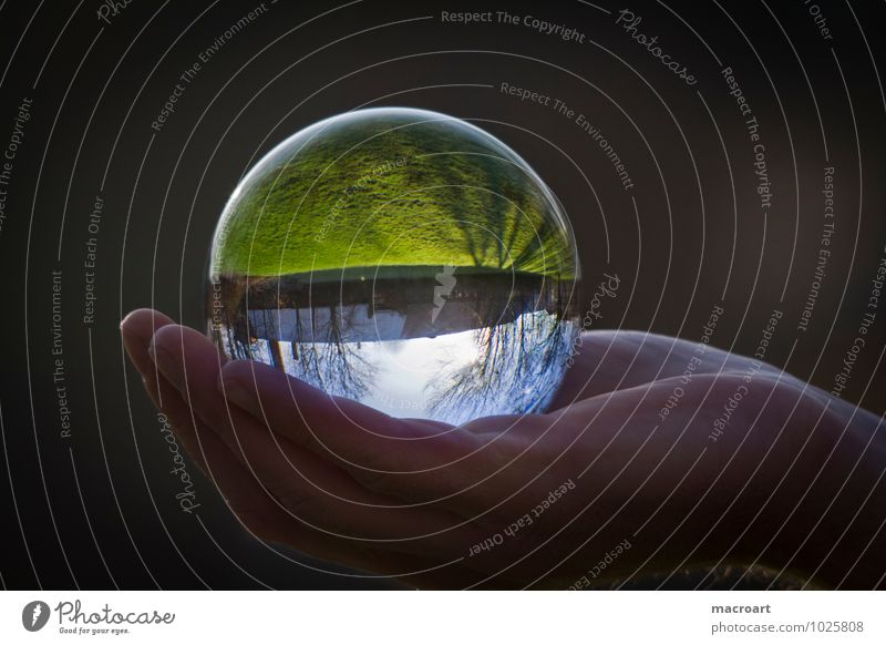 Transparent World Glass ball Nature Grass Meadow Earth Crystal Ball Natural Reflection Mirror image Hand To hold on Man Sky Tree