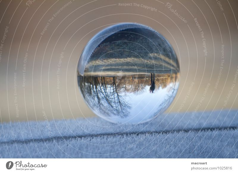 Transparent World Winter Nature Earth Grass Meadow Glass Water Freeze Cold Blue Calm Far-off places Glass ball Ice Snow Frost Ice crystal Frozen Crystal Ball