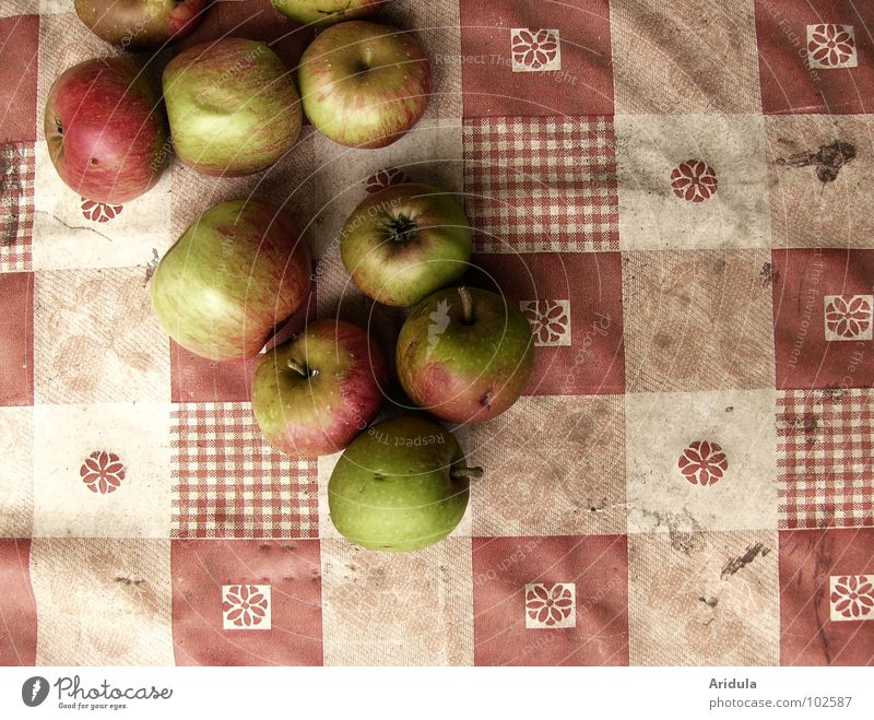 early autumn Table Pattern Square Red White Autumn Healthy Green Delicious Fruit Transience Apple Blanket Dirty Harvest Nutrition Windfall To fall Checkered