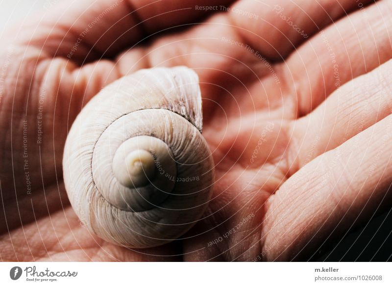 Human being Hand Eroticism Environment Skin Esthetic Protection Environmental protection Snail Environmental pollution Senses Feeble