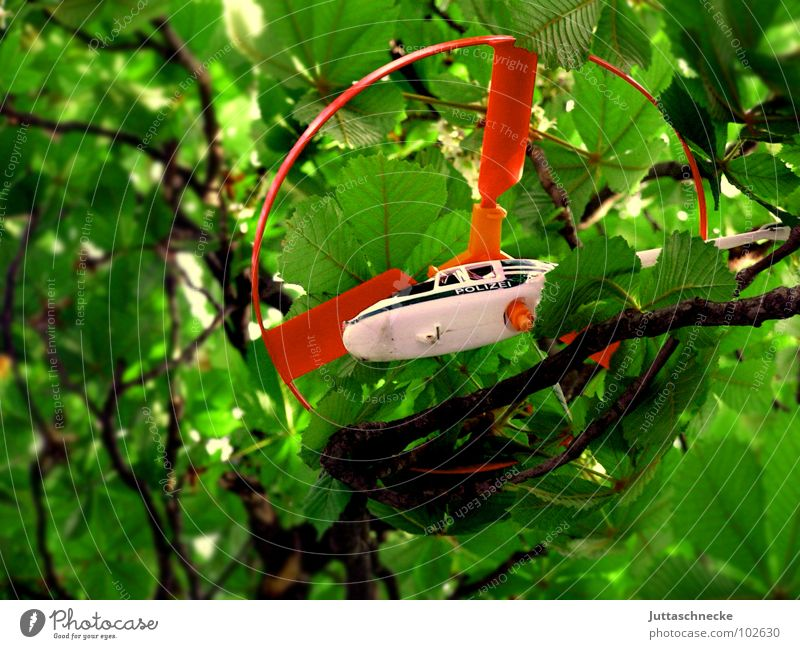 captive Helicopter Playing Toys Red White Green Tree Leaf Captured Air Disaster Aviation toy policy Branch Twig trees branches leaves entangled trapped