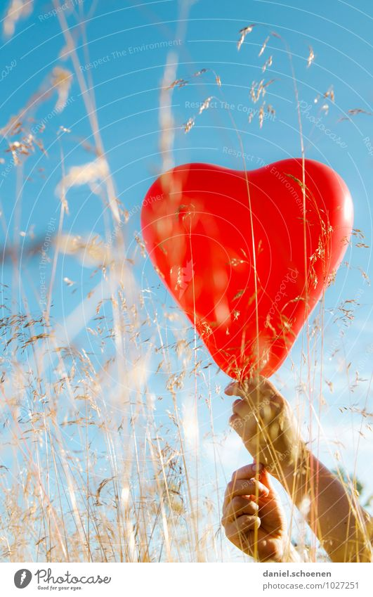 true feelings Hand Cloudless sky Summer Beautiful weather Grass Meadow Balloon Heart Blue Red Emotions Happy Love Infatuation Relationship Multicoloured