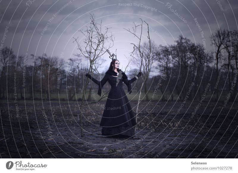 winter Human being Feminine Woman Adults 1 Subculture Rockabilly Gothic style Environment Nature Landscape Sky Clouds Horizon Autumn Winter Tree Field Dress
