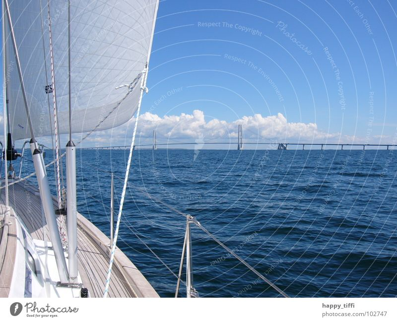 Sailing in Denmark Ocean Waves Breeze Vacation & Travel Beautiful Calm Relaxation Lake White Europe Sailing trip Aquatics Sport boats On board Watercraft Clouds