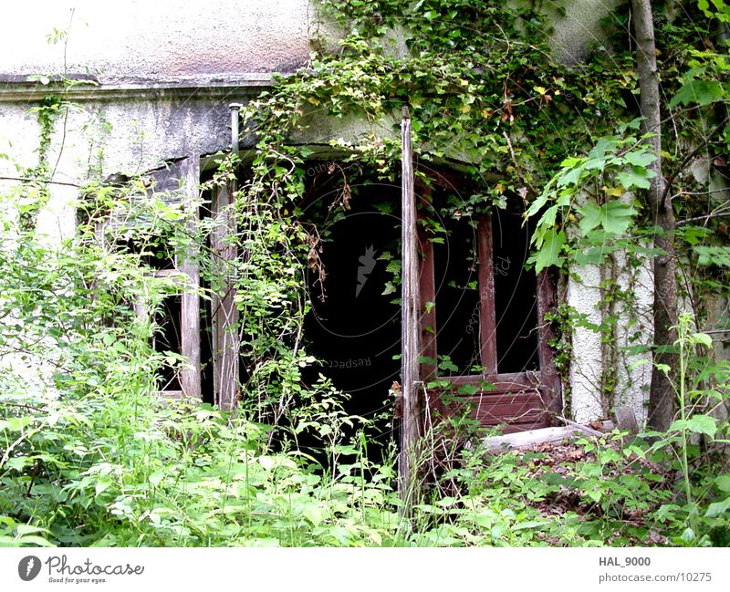 Sleeping Beauty 1 Architecture grow together House (Residential Structure) Door Loneliness