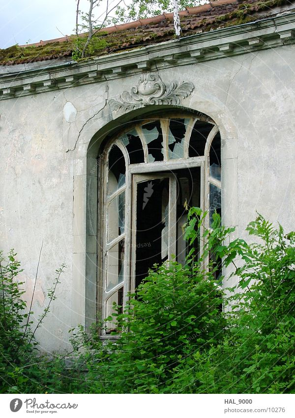 Abandoned drinking hall Architecture Art nouveau Door Window Derelict grow together