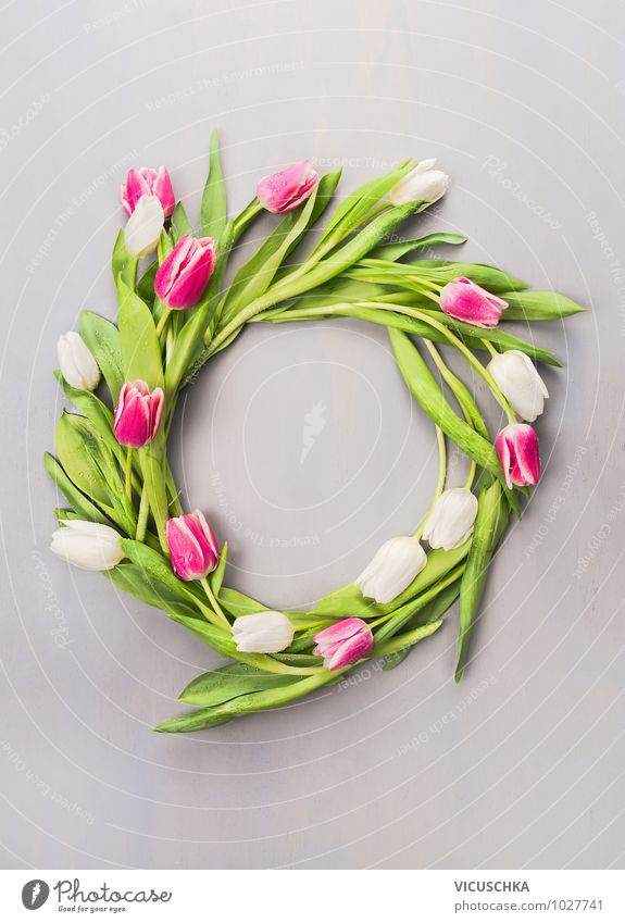 Spring wreath with tulips Style Design Summer Garden Interior design Decoration Feasts & Celebrations Mother's Day Easter Nature Plant Flower Tulip