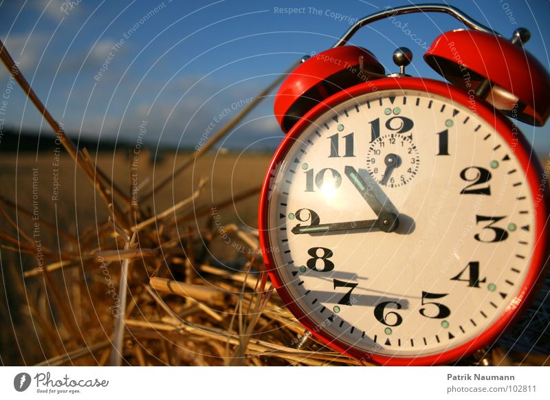 Harvest time I Alarm clock Time Clock Red Field Straw Bale of straw Transience Depth of field Blur Harmonious Digits and numbers Sky