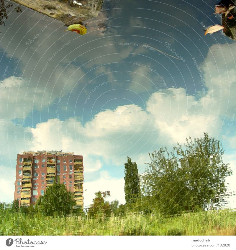 Sky Nature Green Beautiful Plant House (Residential Structure) Colour Meadow Architecture High-rise River Level Kitsch Surrealism 08 15