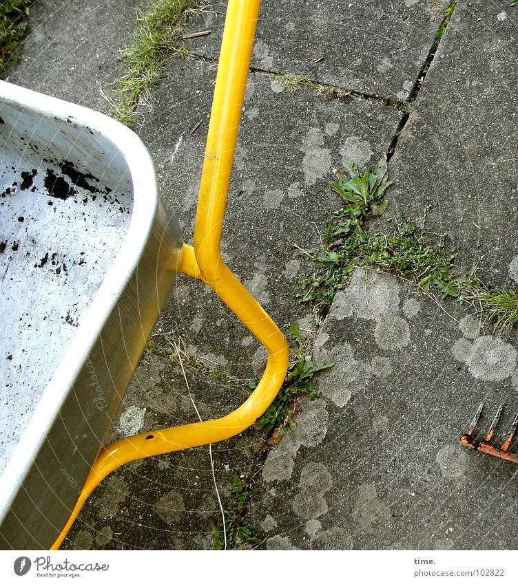 Plant Yellow Grass Garden Park Orange Dirty Concrete Transport Earth Empty Furrow Gap Pitchfork Wheelbarrow