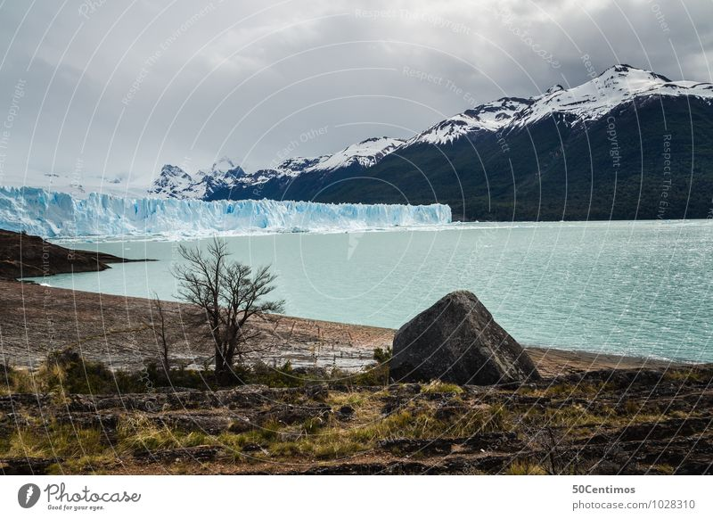 Perito Moreno Glacier in Patagonia - Argentina Vacation & Travel Tourism Trip Adventure Far-off places Freedom City trip Environment Nature Landscape