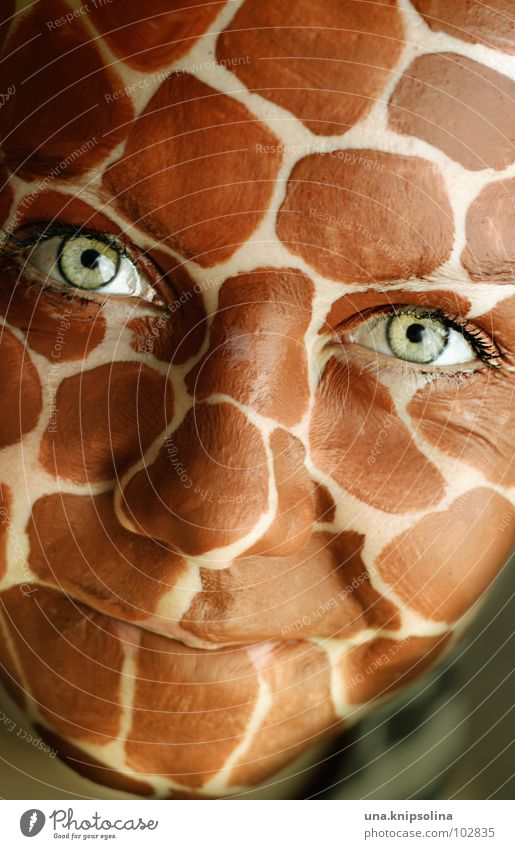 Green Face Eyes Laughter Mouth Happiness Friendliness Wrinkles Africa Patch Grinning Eyelash Intensive Giraffe Saucer-eyed Laugh lines