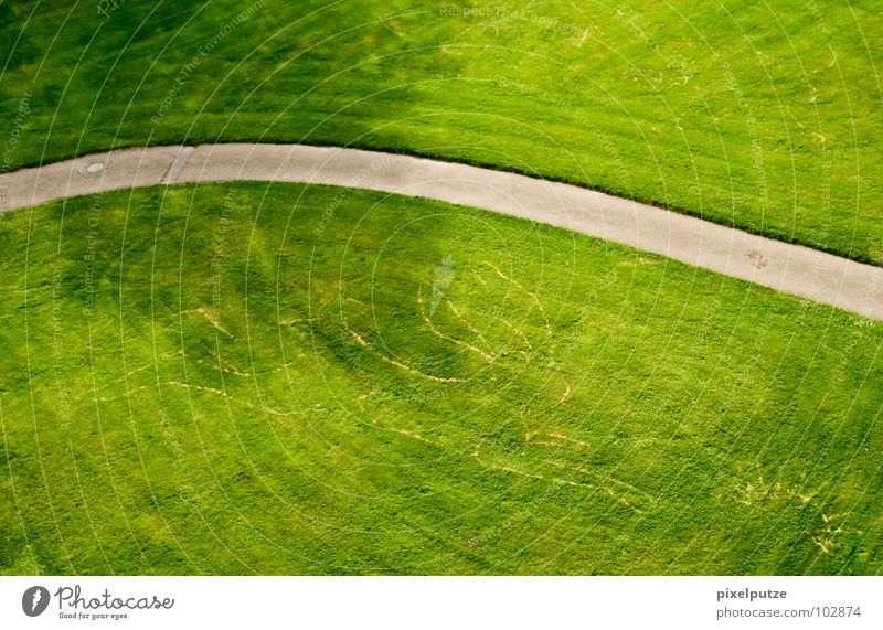 Green Meadow Grass Garden Lanes & trails Park Art Lawn Culture Asphalt Tracks Sidewalk Hare & Rabbit & Bunny Swing Hedgehog