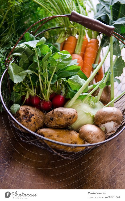 Natural Healthy Food Dirty Fresh Nutrition Kitchen Vegetable Delicious Organic produce Mushroom Difference Diet Vegetarian diet Carrot Wooden table