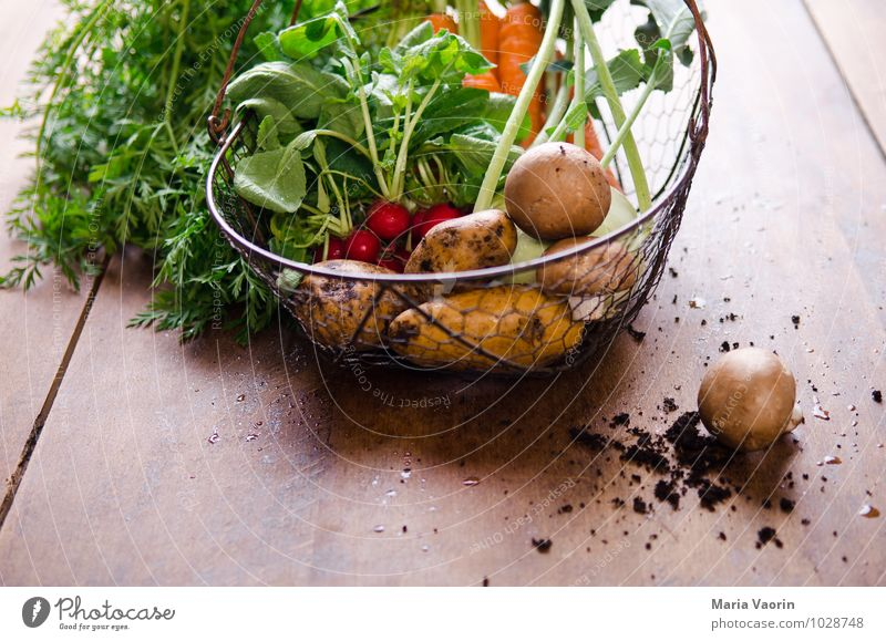 vegetable basket Food Vegetable Eating Organic produce Vegetarian diet Diet Healthy Healthy Eating Life Nature Earth Fresh Natural To enjoy Carrot Potatoes