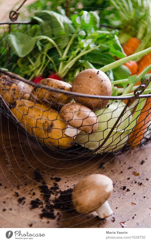 Healthy Eating Natural Food Earth Fresh Vegetable Diet Vegetarian diet Carrot Wooden table Radish Button mushroom Vegetable garden Kohlrabi