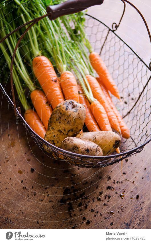 garden vegetables Food Vegetable Nutrition Organic produce Vegetarian diet Diet Healthy Earth Agricultural crop Dirty Fresh Vegetable garden Vegetable market