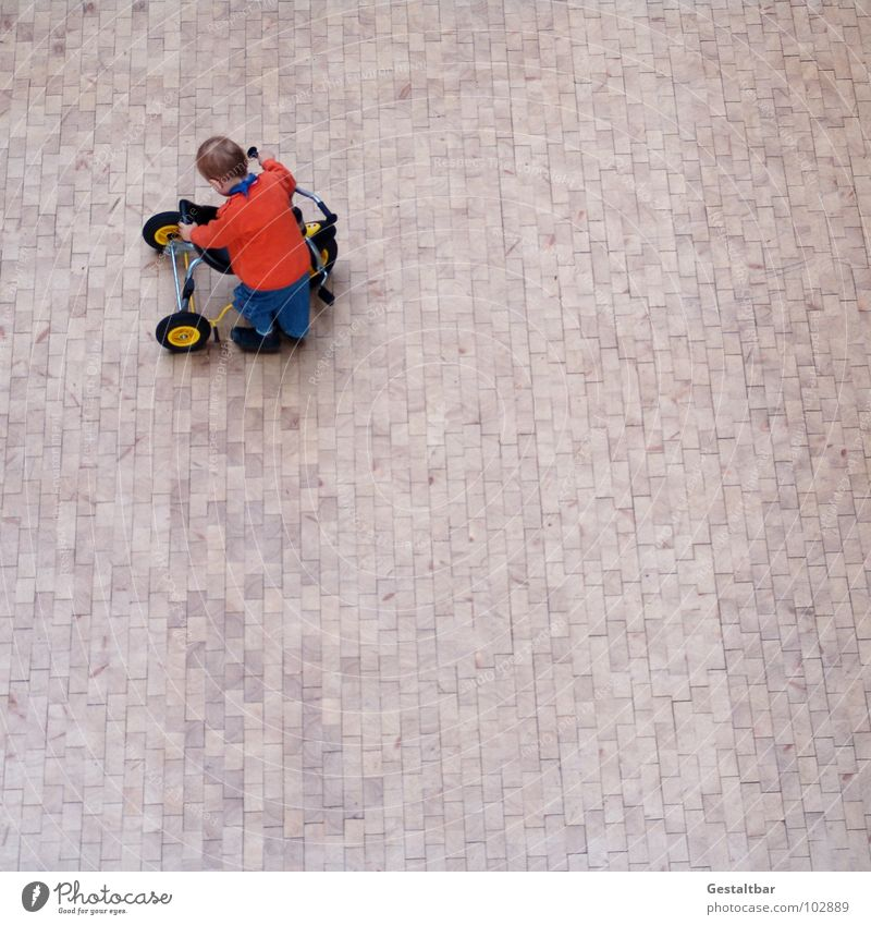 Hardy Child Tricycle Dwarf Conduct Boy (child) Toddler Wooden floor Parquet floor Hallway Bird's-eye view Small Toys Playing Driving Cute Formulated Above Joy