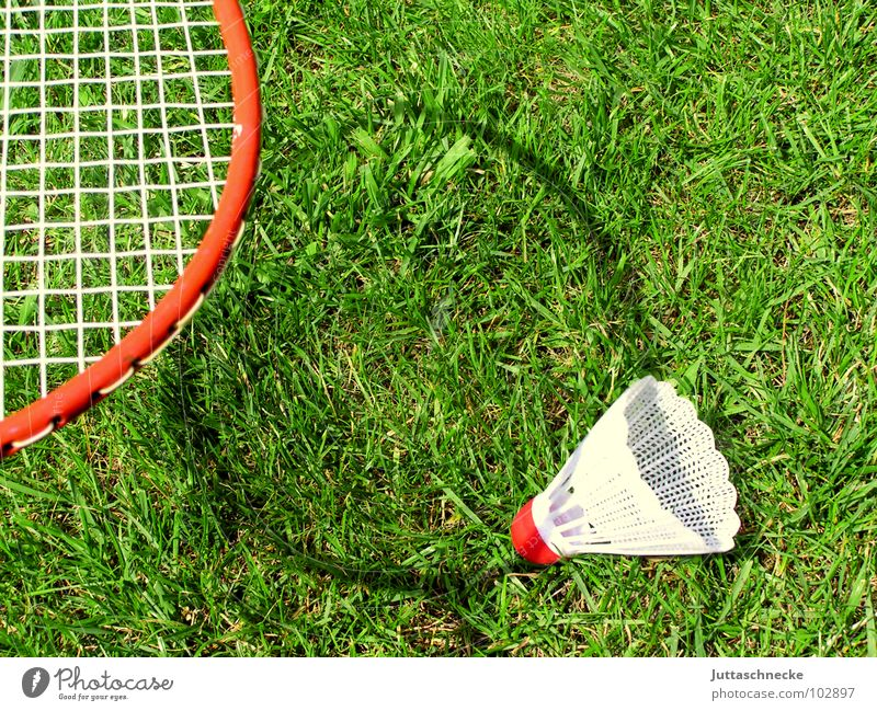 shadow play Shadow play Playing Toys Badminton Grass Sports Exterior shot Lining Leisure and hobbies Shuttlecock