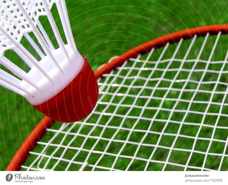 Green White Red Sports Playing Ball Toys Badminton Object photography Lining