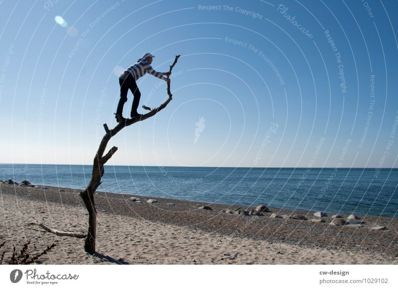 Human being Vacation & Travel Youth (Young adults) Summer Water Young man Landscape Tree Relaxation Joy Far-off places Beach Adults Life Coast Freedom