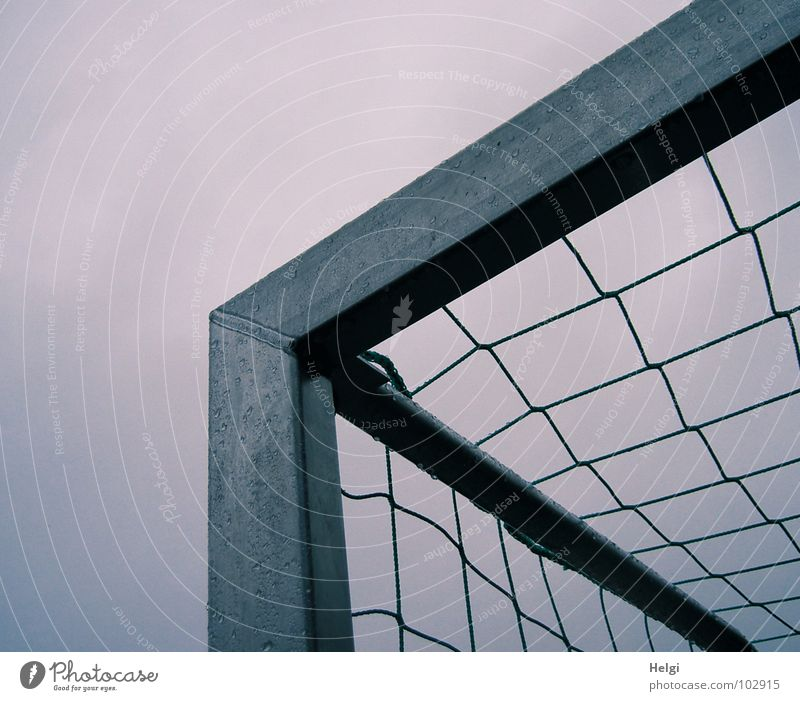 upper corner of a soccer goal with net in front of grey sky Playing Sporting event Ball sports Rod Prop Gray Green Wet Passion Vertical Stand Reticular