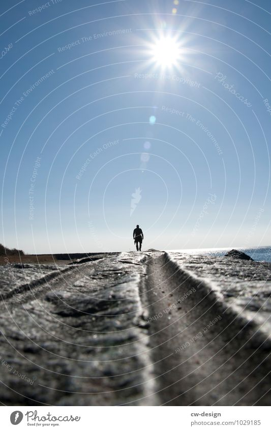 Human being Nature Man Summer Water Relaxation Loneliness Beach Adults Life Autumn Spring Coast Going Horizon Masculine