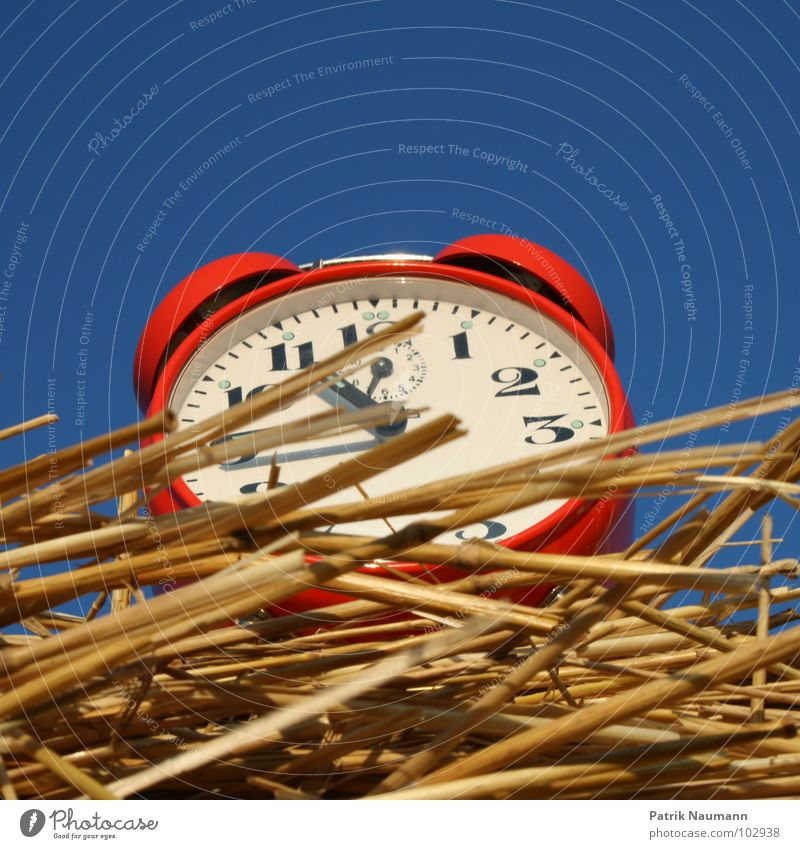 Harvest time II Alarm clock Clock Red Time Straw Bale of straw Transience Harmonious Agriculture Rural temporal Sky Digits and numbers Blue Americas