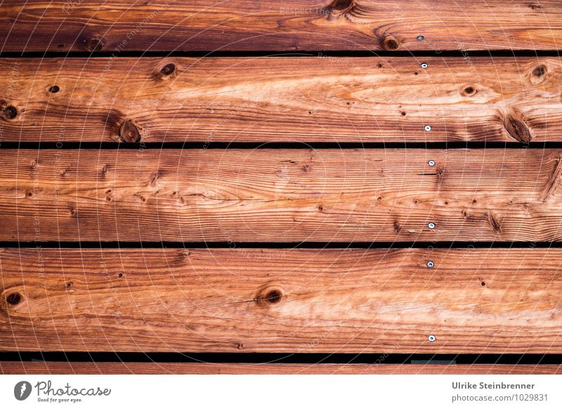 Durable | and renewable II Nature Tree House (Residential Structure) Building Wall (barrier) Wall (building) Facade Wood Breathe Sustainability Natural Warmth