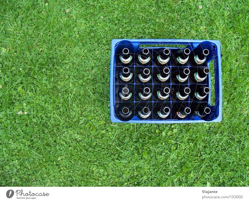 20 empty necks - reloaded. Beer Case of beer Bottle of beer Deposit bottle Beverage Refreshment Meadow Grass Nature Green Alcoholism Cold drink Alcohol-fueled